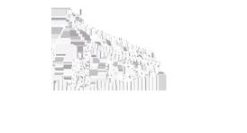 logo manester